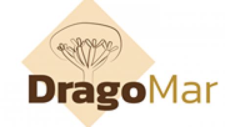 Parque Dragomar Tacoronte